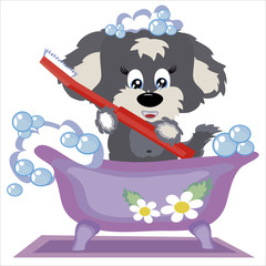 Puppy with brush to the teeth,in the buthroom,isolated.
