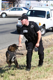 Police officer and canine officer. poster