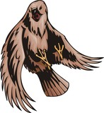 The buzzard with brown plumage. Predatory birds. poster