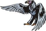 Griffin with dark blue plumage.  Predatory birds. poster
