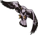 Kite with violet plumage. Predatory birds. poster