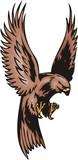 Kite with brown plumage. Predatory birds. poster