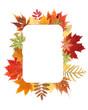 Autumn sheet by frame