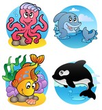 Various aquatic animals and fishes poster
