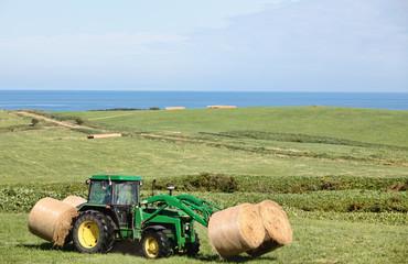 牧場の作業