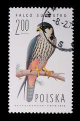 Poland - CIRCA 1974: A stamp - Falco Subbuteo