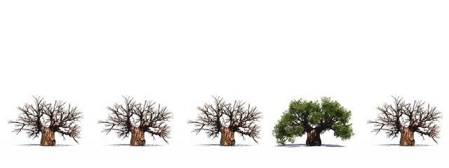 High resolution green 3D conceptual baobab trees row
