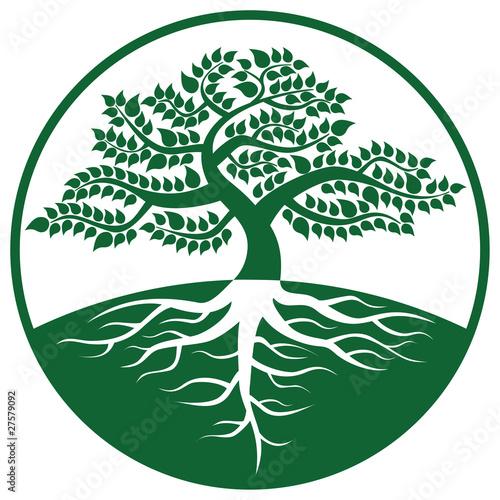 3d大树矢量图