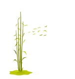 The illustration a wind breaks bamboo leaves, isolated