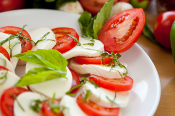 mozzarella and Basil and Tomato 2