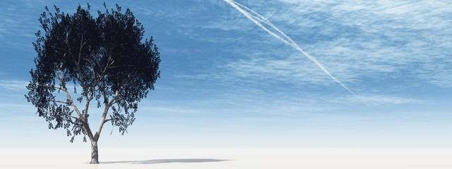 High resolution 3D tree over a blue sky