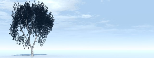 High resolution conceptual banner with a tree