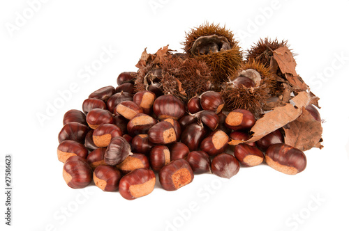 chestnuts with leaves on white