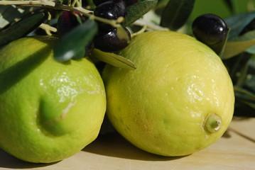 Olivenzweige und Zitronen