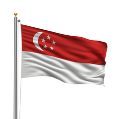 Flag of Singapore waving in the wind in front of white