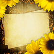 Greeting grunge card with bunch of sunflowers