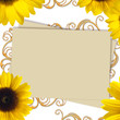 Greeting card with bunch of sunflowers