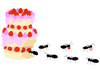 蟻とケーキ