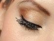 Beautiful macro shot of eye with long lashes and make-up in brow
