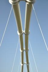 Puente del Biopark de Valencia, España.
