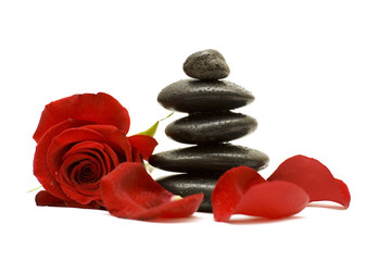 Red flower and black stones isolated