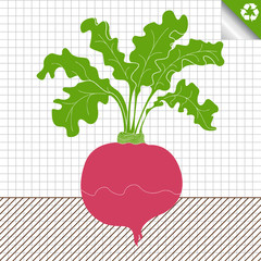Beetroot vector background
