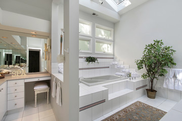 Master bath with step up tub