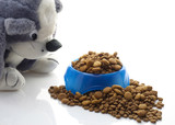bowl of kibble for dogs poster