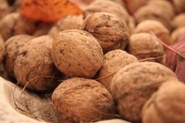 autumnal walnuts