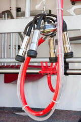 Cattle Milking Equipment Suckers with Bright Red Tubing