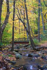 wood bridge over creek