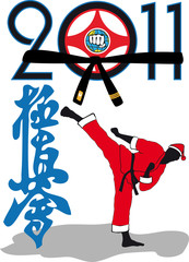 Karate kyokushinkai - Martial art in New Year