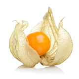 Physalis fruit on white background