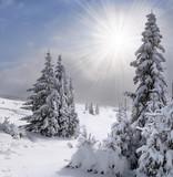 Fototapety Beautiful winter landscape in the Carpathian mountains