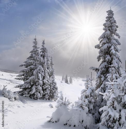Piękny zimowy krajobraz w Karpatach