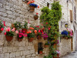 Colorful flowers lining a medieval stone wall in Italy
