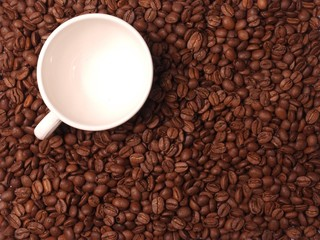 Coffee cup standing in coffee beans
