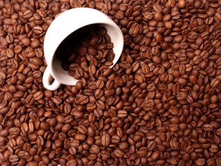 Coffee cup in coffee beans