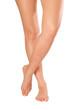 Beautiful young woman`s legs