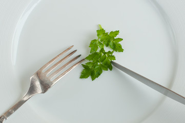 parsley on the plate close up