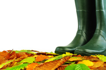 Boots on leaves