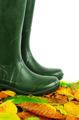 Wellington boots on leaves