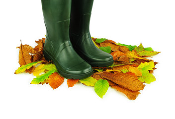 Green boots on leaves