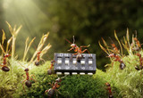 ants play music on microchip, fairytale poster