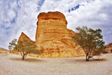 Picturesque landscape in stone desert.