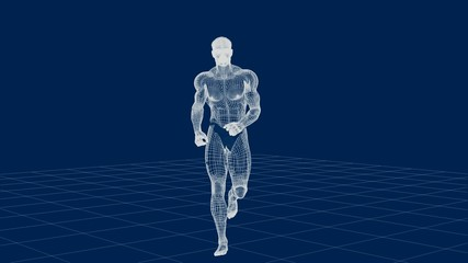 Male Human Wire