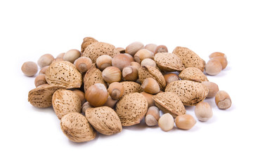 hazelnuts and almond nuts Isolated on a white background