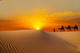 Fototapete Sand - Ocolus - Sandwüste