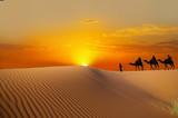 Fototapeta piasek - pustynia - Pustynia Piaszczysta