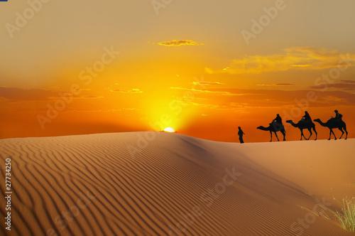Tuinposter Zandwoestijn Sahara